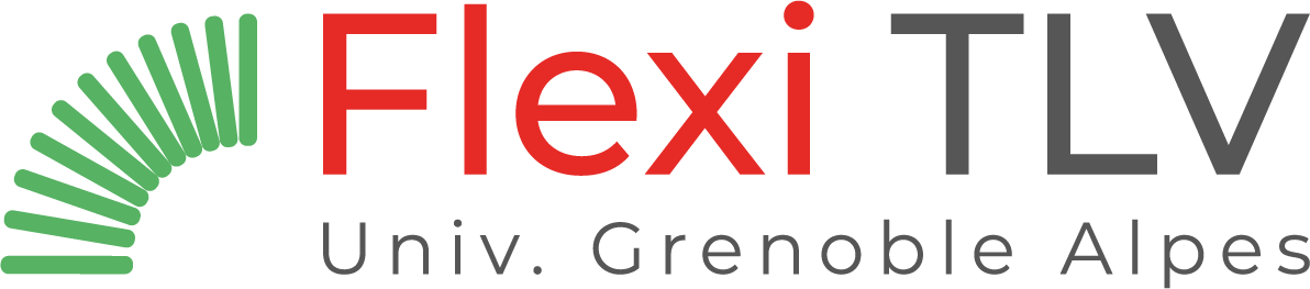 Flexi TLV logo